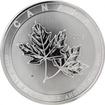 Stříbrná investiční mince Magnificent Maple Leaf 10 Oz 2017