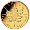 Investiční zlato Maple Leaf zlatá mince 1/4oz