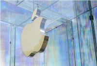 EK: Apple mus� Irsku doplatit na dan�ch 13 mld. EUR