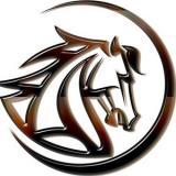 Logo MustangCoin