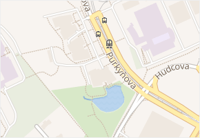 Purkyňova v obci Brno - mapa ulice