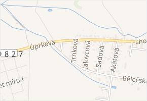 Trnková v obci Hradec Králové - mapa ulice