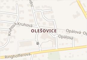 Olešovice v obci Kamenice - mapa části obce