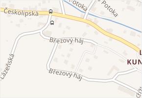 Březový háj v obci Osečná - mapa ulice