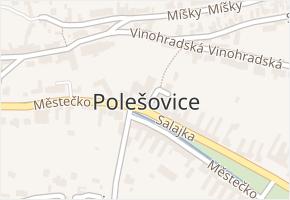 Polešovice v obci Polešovice - mapa části obce