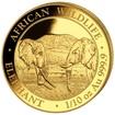 Zlatá mince 100 Schillings Elephant (Slon africký) 1/10 Oz 2020 (African Wildlife Series)
