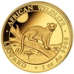Zlatá mince Leopard 1 Oz 2021 (African Wildlife Series)