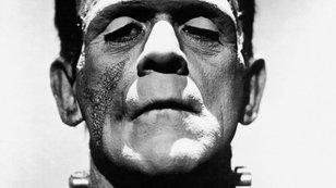 Medvěd Spitznagel: Současný trh je jen iluze, Fed je jako Frankenstein